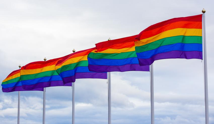 set of rainbow flags in a line
